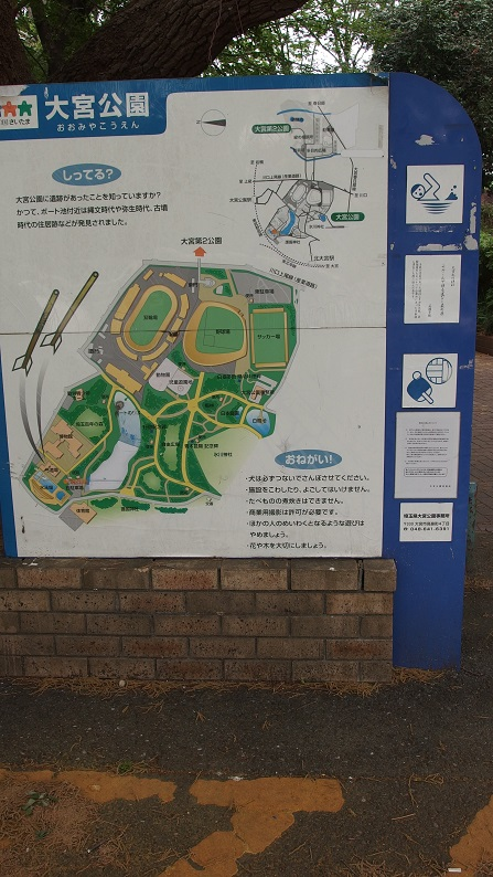 大宮公園案内.jpg